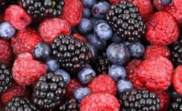 Antioxidanten Nahrungsmittel