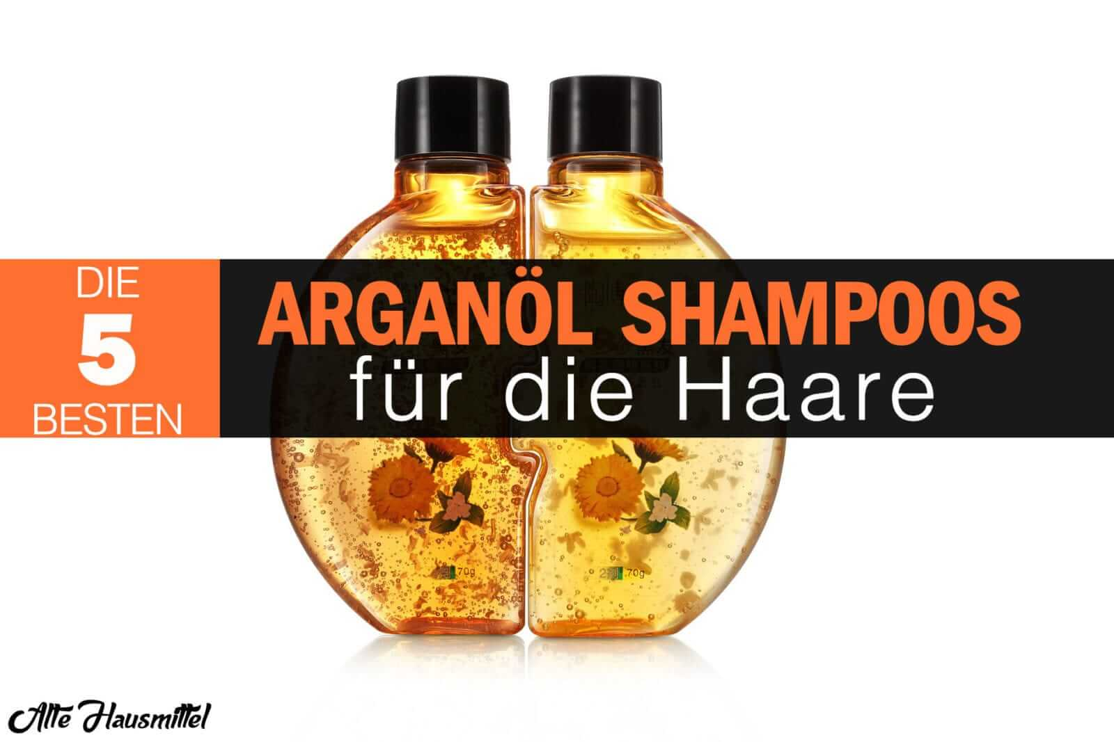 argan l f r die haare die argan l shampoo testsieger. Black Bedroom Furniture Sets. Home Design Ideas