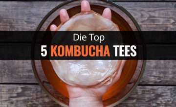 Die Top 5 Kombucha Tees