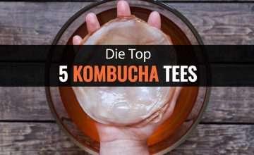 Die Top 5 Kombucha Tees