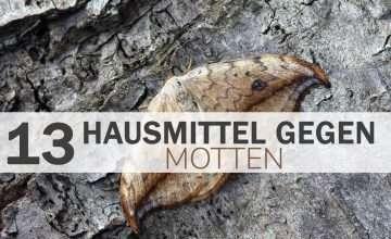 Hausmittel gegen Motten