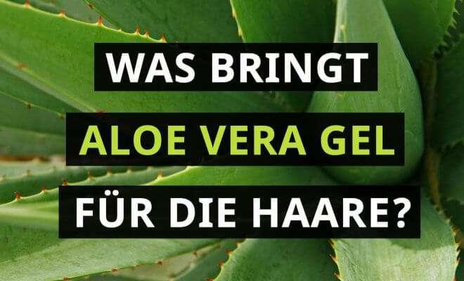 Was bringt Aloe Vera Gel für die Haare?