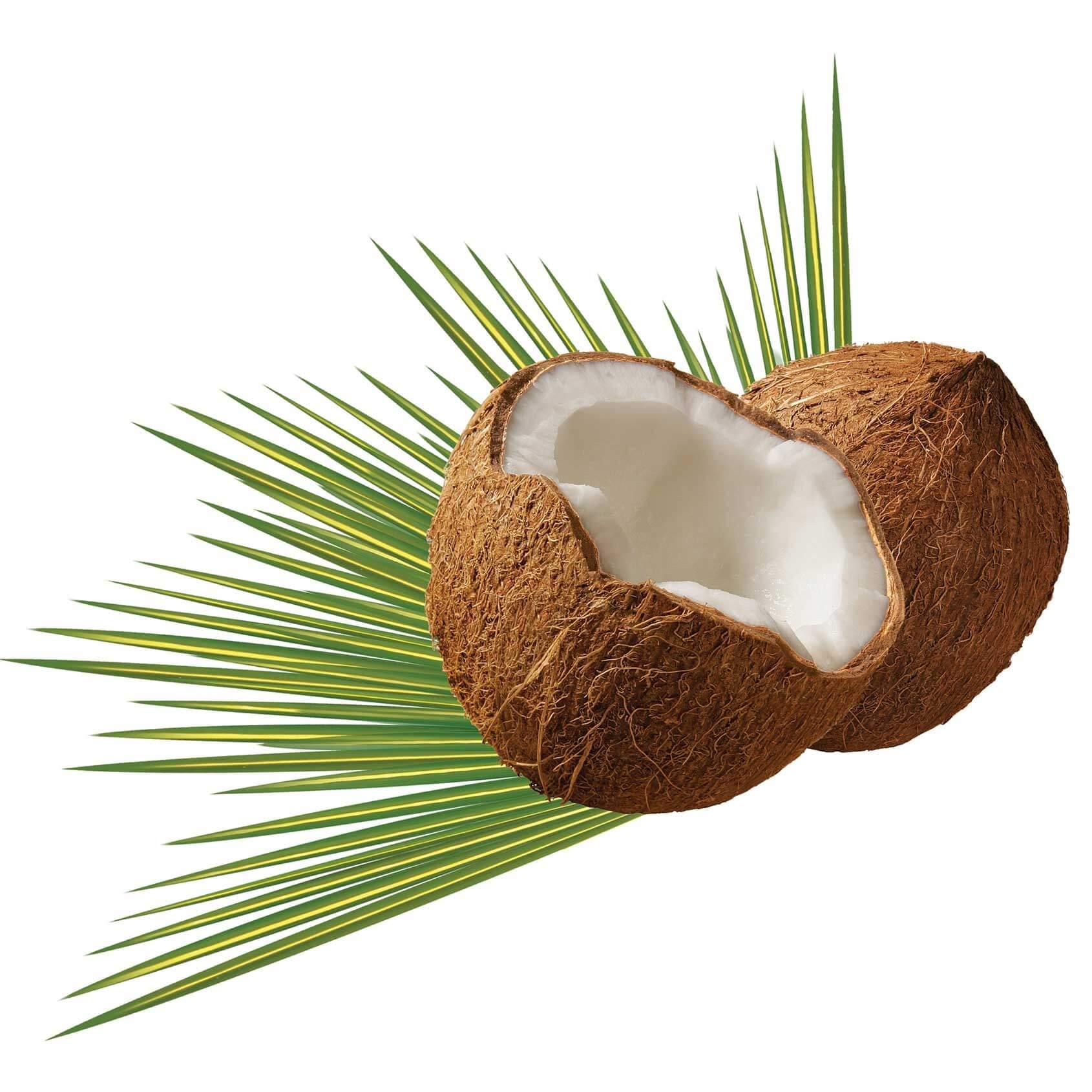 Kokosöl für die Haut