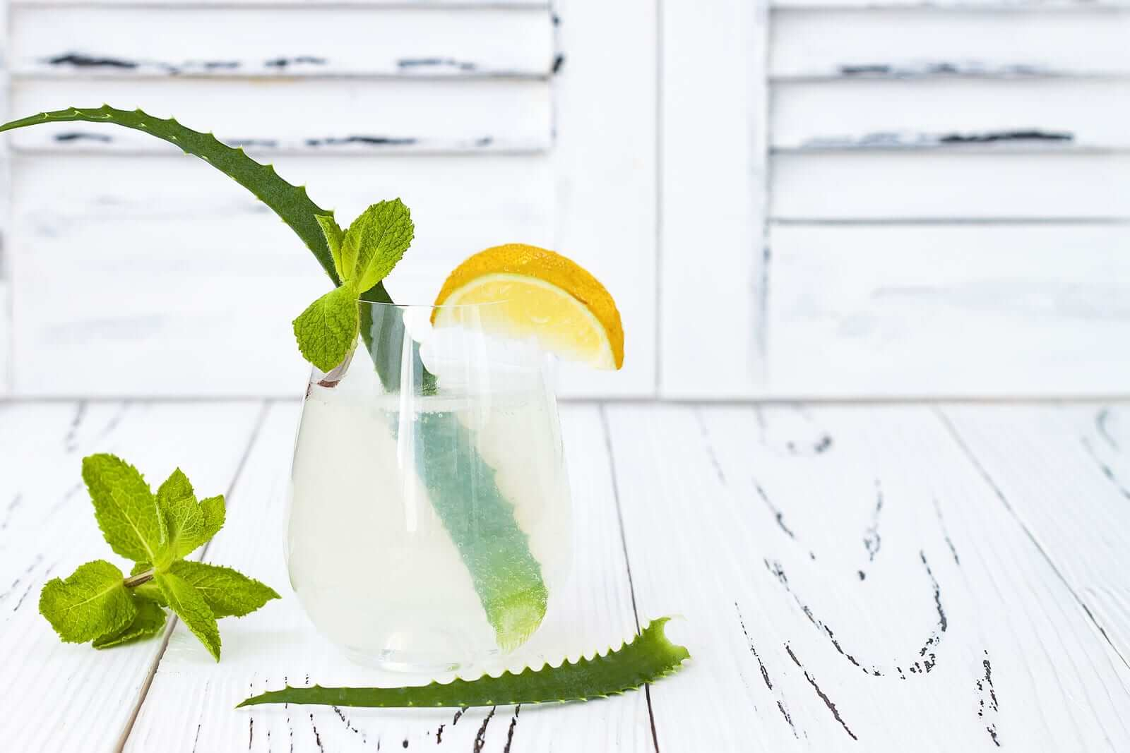 Aloe Vera Zitronen Rezept Detox Wasser