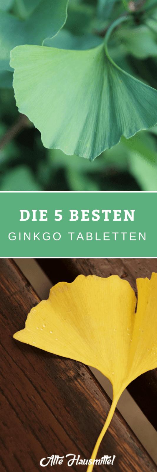 Welche Ginkgo Tabletten Hersteller gibt es ✓ Wie und wobei kann Ginkgo helfen ✓ Die unglaublich positiven Eigenschaften von dieser Pflanze ✓