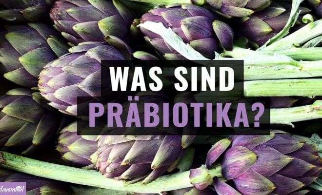 Was sind Präbiotika?