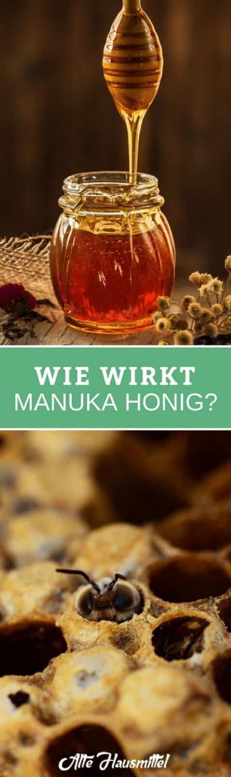 Wie wirkt Manuka Honig?