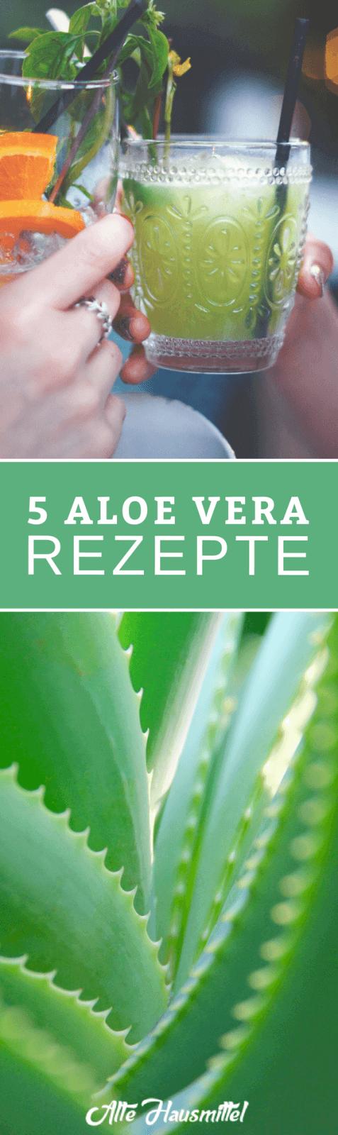 5 Aloe Vera Rezepte