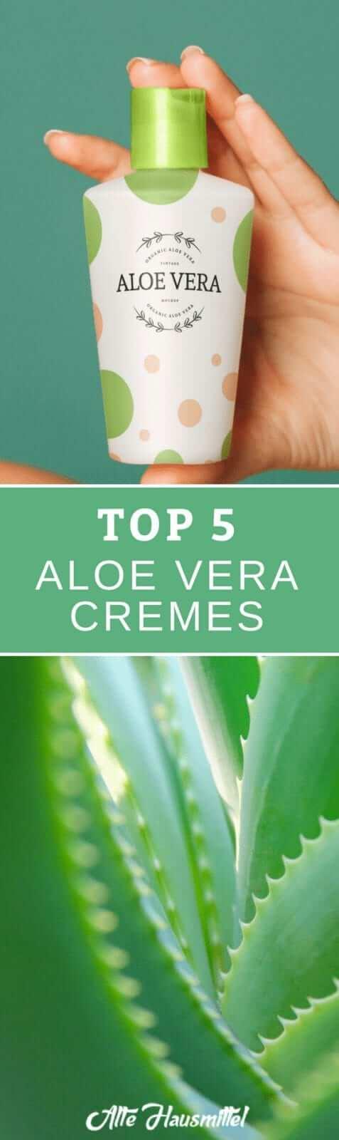 Die besten Aloe Vera Cremes im Test & Vergleich