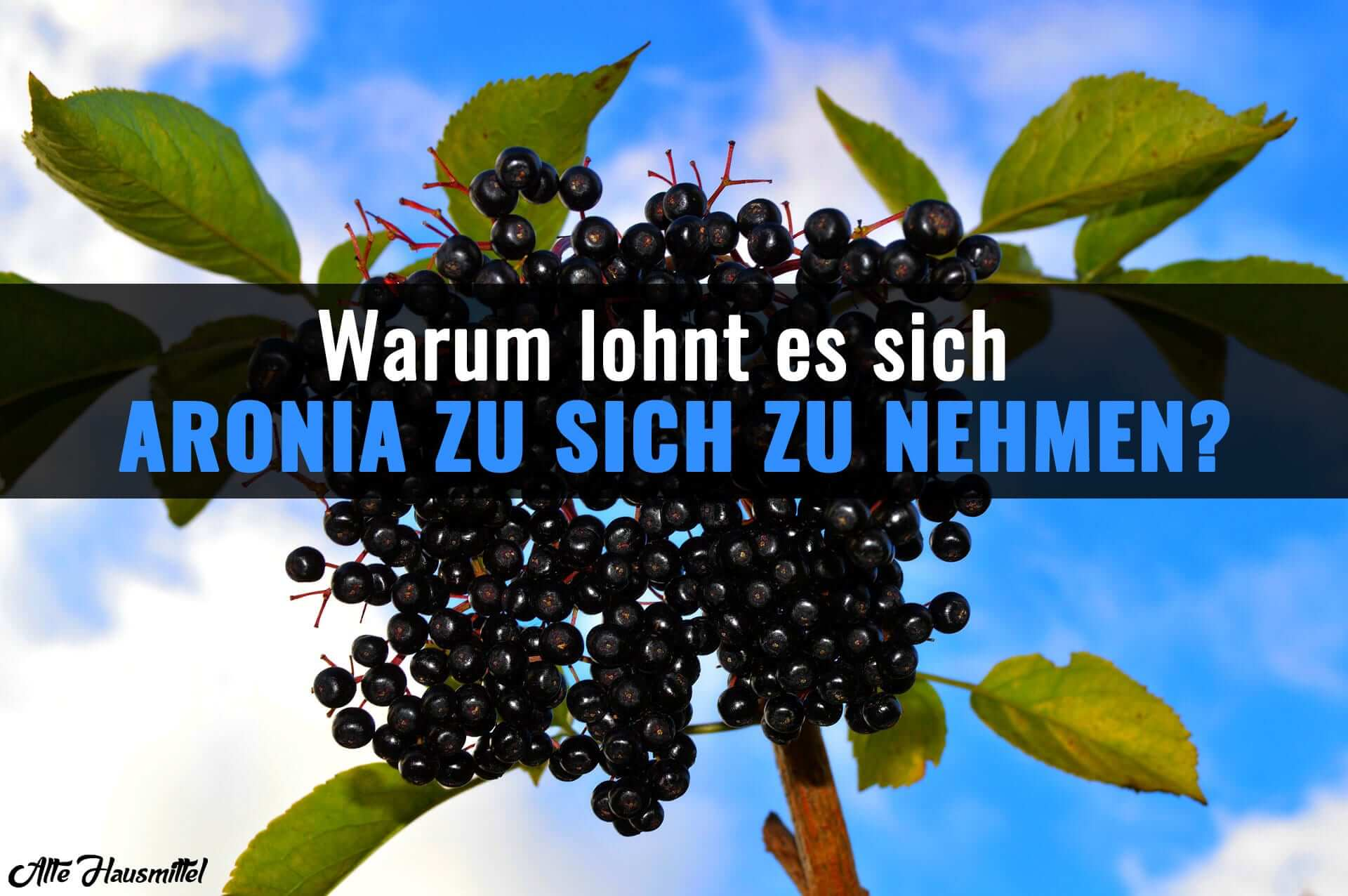 der beste aronia saft f r ihre gesundheit im test. Black Bedroom Furniture Sets. Home Design Ideas
