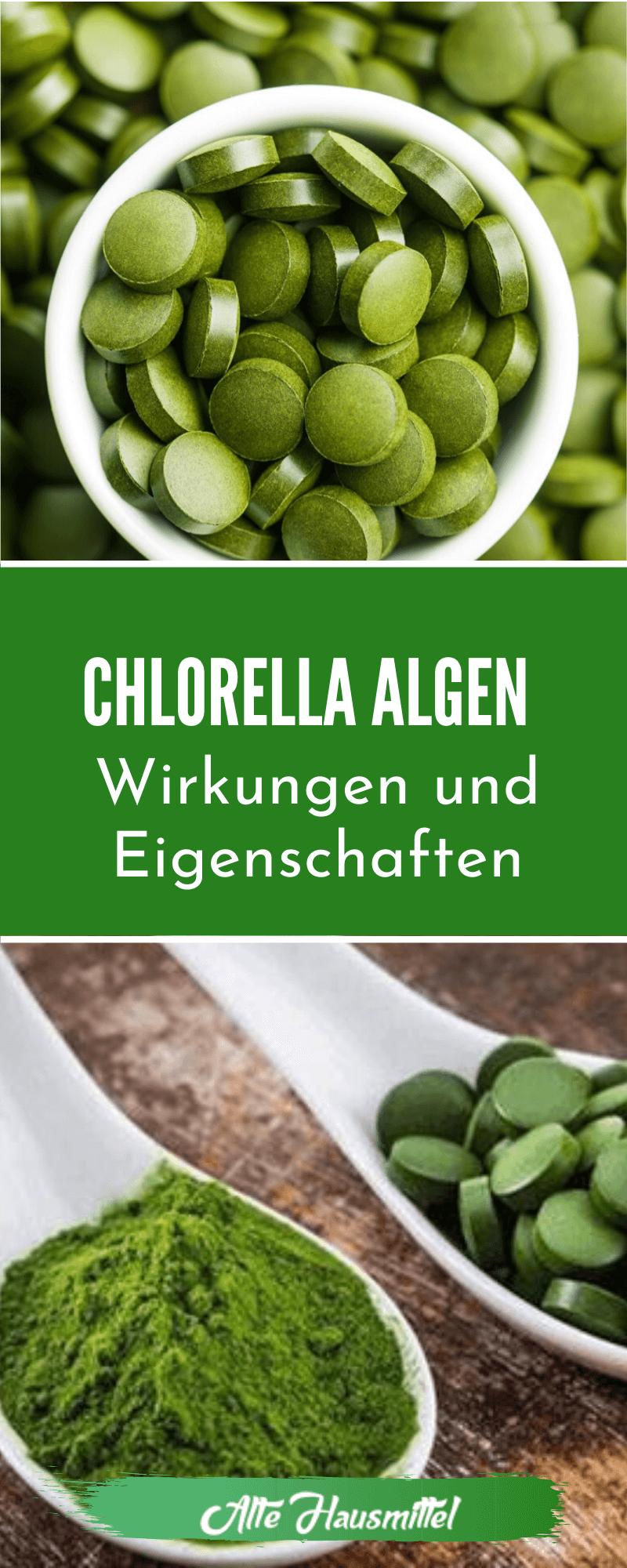 Chlorella Algen - Wirkungen und Eigenschaften