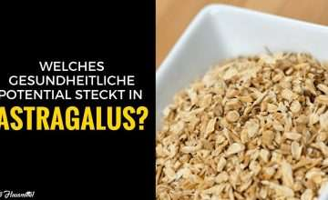 Astragalus Extrakt