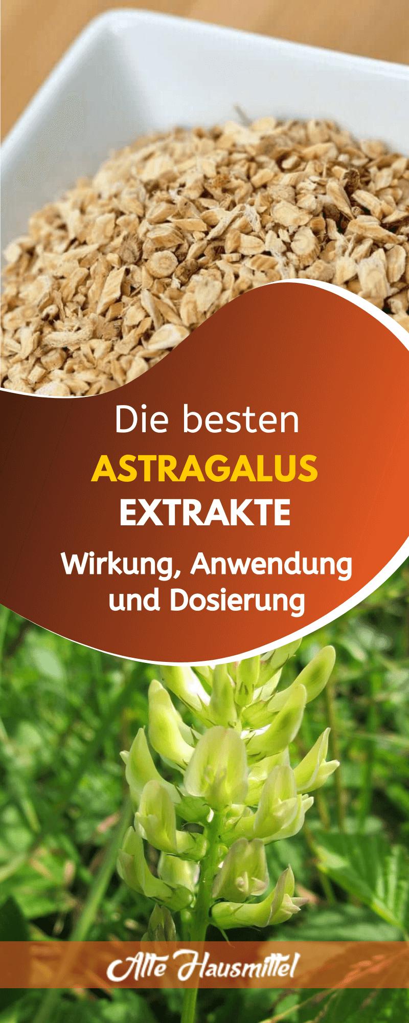 Die besten Astragalus Extrakte: Wirkung, Anwendung und Dosierung