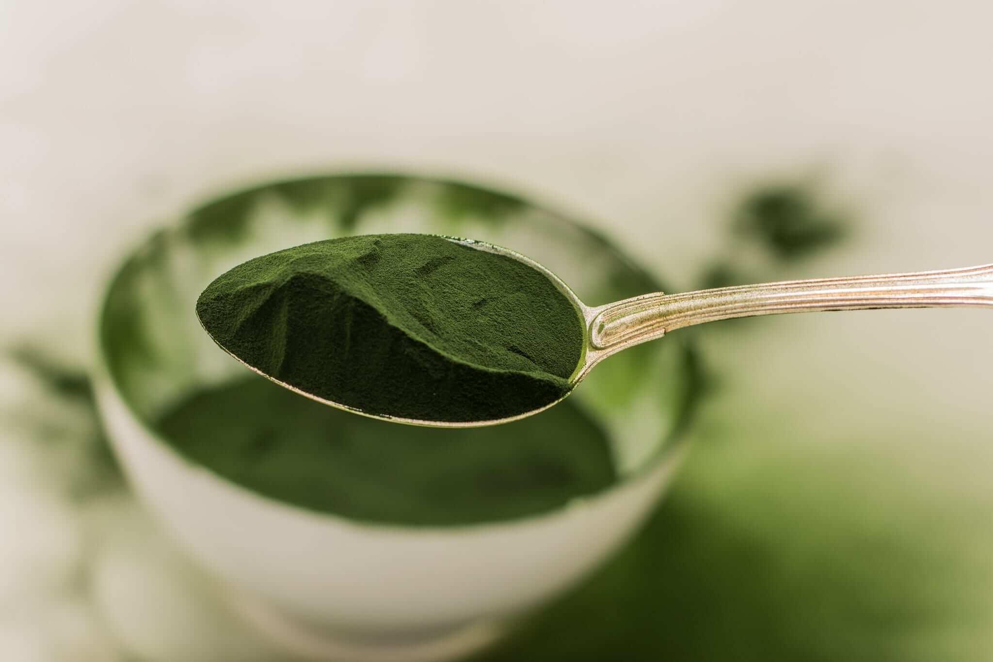 Grünes Pulver auf Löffel