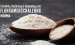 Dosierung und Anwendung von Flohsamenschalen