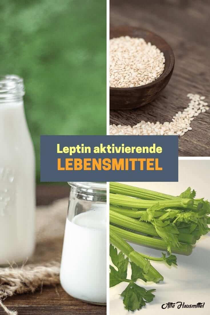 Leptin aktivierende Lebensmittel