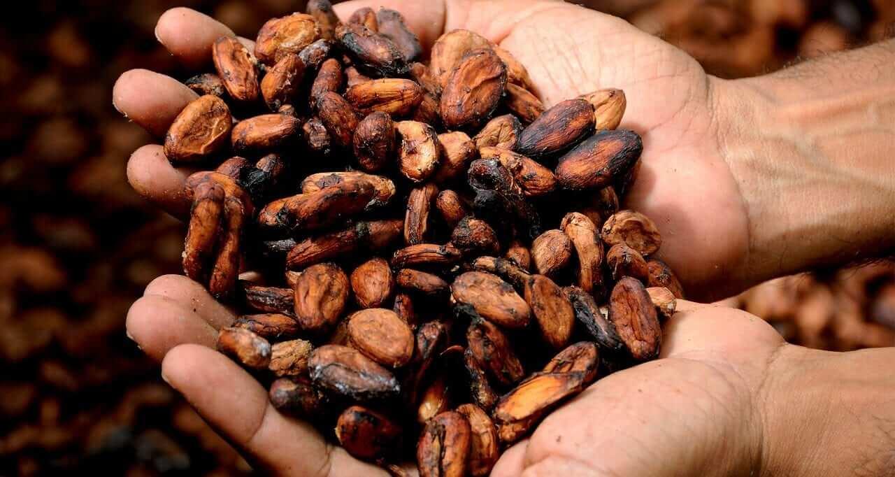 Kakaobutter gegen Dehnungsstreifen