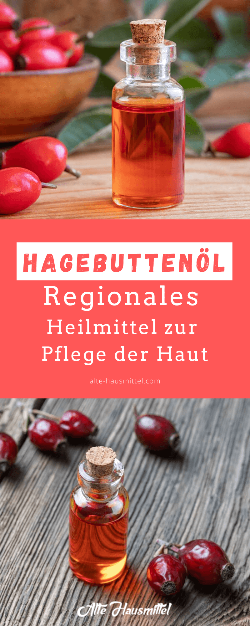 Hagebuttenöl - regionales Heilmittel zur Pflege der Haut